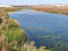 https://flic.kr/p/bAUoew | Laguna en Humedal Salinas Chicas 1 | Conoce más sobre este lugar en mi blog Apuntes y Viajes: apuntesyviajes.blogspot.com/2012/05/humedal-de-salinas-ch...