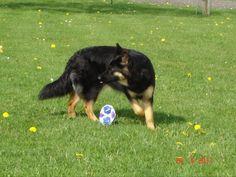 Vive le foot!