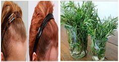 Todos tienen esto en el jardín, pero nadie sabe que sirve para curar la alopecia, el reumatismo y los dolores de cabeza.