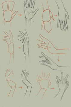 how-to-draw-anime-hands-step-by-step_4.jpg (546×819)