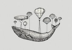 grandes [+] vertebrados: ballenas / whales
