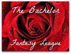 Bachelor Fantasy League on What the Schneck - the blog #JuanPablo #theBachelor #BachelorFantasy #Fantasy http://whattheschneck.blogspot.com/2014/01/bachelor-fantasy-league.html