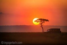 Sunrise in the Masai Mara.   Kenya.   www.ingogerlach.com