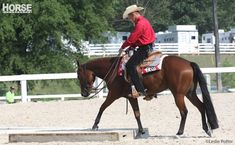Work on western trail class obstacles with these practical tips.