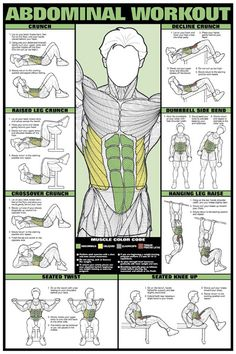 Abs Workout #absworkout #abs #fitness