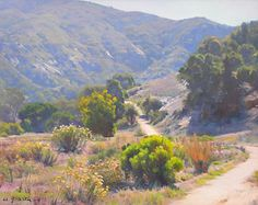 Laguna Canyon by W Jason Situ Oil Impressionist Landscape, Landscape Art, Landscape Paintings, Mountain Paintings, Nature Paintings, Southwest Art, Fashion Painting, Traditional Paintings, Mountain Landscape