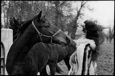 Henri Cartier-Bresson - France. Normandy. Calvados. 1969. Stud farm.