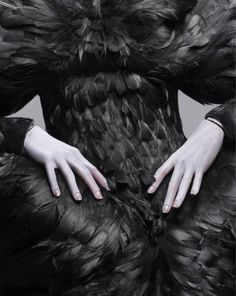 Image result for black bird woman