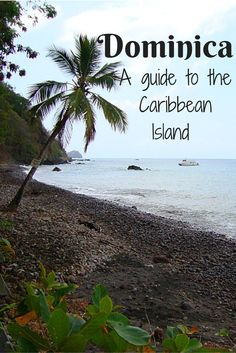 #Dominica is a fantastic spot to stop on a cruise- or hang for a week! #travel #Caribbean
