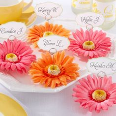 Gerbera Daisy Place Card/Photo Holder by Beau-coup
