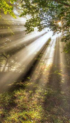 Fantastic Art, Amazing, Serenity, Photo Art, Sunshine, Scenery, Country Roads, Sun Rays, Adventure