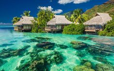 The World's Most Romantic Islands:  Moorea in French Polynesia