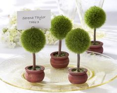 Topiary place card holders are unique favors for a garden party or spring wedding. These little green trees from Kate Aspen are great photo holders too. Wedding Places, Wedding Place Cards, Wedding Table, Wedding Reception, Rustic Wedding, Card Wedding, Wedding Gifts, Wedding Invitations, Bridal Table