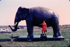 Roadside America Noah's Ark Restaurant With Lady Standing by Giant Huge Elephant Vintage Color Slide 11684 epsteam by QueeniesCollectibles on Etsy