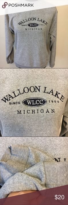 Walloon Lake Michigan sweatshirt size small unisex Michigan sweatshirt from camp David brand. Made in the . USA. Has slight pilling on arms. Has a weaved look to it. Unique. Comfortable. 18 arm to arm and 24 shoulder to hem. souvenir  Tops Sweatshirts & Hoodies
