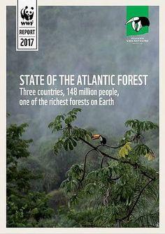 WWF Brasil - Relatório State of the Atlantic Forest mostra trabalho de conservação na Mata Atlântica nos últimos 15 anos