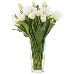 NDI Tulip White Glass Square Wf312 (3.860 ARS) ❤ liked on Polyvore featuring home, home decor, floral decor, flowers, fillers, accessories, decor, artificial flora, glass flower stems and white home decor