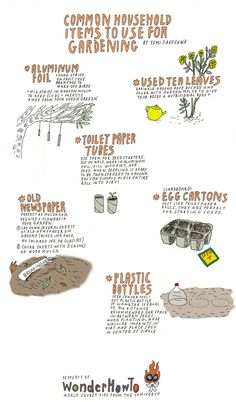 Reuse, recycle in the garden - Infographic which illustrates how we can use 6 common household items in our garden.