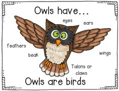 Comparing owls and bats, activities with owls and bats along with 5 interactive charts of fun fall poems.  The interactive charts make  great shared reading activities. So important to do with those beginning readers.