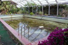 Pool area of the abandoned Imperial Hotel, the island of Hachijojima, Tokyo, Japan.