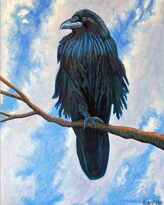 Raven Art of Brian Commerford