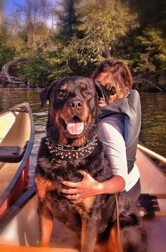 """Click visit site and Check out Cool """"Rottweiler"""" T-shirts. This website is outstanding. Tip: You can search """"your name"""" or """"your favorite shirts"""" at search bar on the top."""