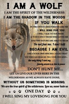 Wolf Qoutes, Lone Wolf Quotes, Wise Quotes, Quotable Quotes, Inspirational Quotes, Dark Quotes, Animal Spirit Guides, Wolf Spirit Animal, Wolf Tattoo Sleeve