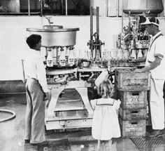 """Adohr Farms milk bottling facility, circa 1935-1937 :: San Fernando Valley History. Caption: """"The milk is bottled a few minutes after it is milked and cooled. Even the air in the bottling room is washed - which is just one example of the extreme care that is taken in the production of Certified Milk."""" The girl in the foreground may be Shirley Temple, who did a series of promotional photographs for the farm. [Her Guernsey calf, Tillie, from the children of Tillamook, Oregon was at the farm…"""