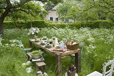 Take a walk and discover the beauty that is all around us......sit down and partake of what you find......Cindy