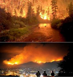 The 2009 California wildfires were a series of 63 wildfires that were active in the state of California during the year 2009. The fires burned more than 336,020 acres of land from the beginning of July through late November following red flag warnings, destroying hundreds of structures and killing two people
