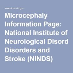 Microcephaly Information Page National Institute Of Neurological Disorders And Stroke NINDS