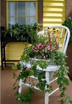 43 Ide Tanam Bunga di Kursi Bekas | www.RumahSemuti.com