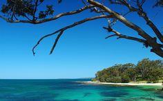 Jervis Bay: Booderee National Park, bushwalking, cycling, camping, indigenous culture. Jervis Bay Marine Park: scuba diving, kayaking.