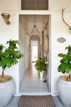 Stylist Kara Rosenlund's Queenslander home. From the June 2013 issue of Inside Out magazine. Styling by Megan Morton. Photography by Kara Rosenlund. White Painted Floors, White Walls, Floor Design, House Design, Halls, Interior And Exterior, Interior Design, Interior Stylist, Interior Door