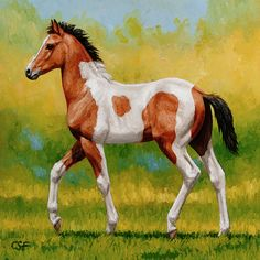 Horse Painting - Bay Pinto Foal by Crista Forest Farm Paintings, Animal Paintings, Paintings For Sale, Horse Paintings, Horse Wall Art, Horse Artwork, Horse Mural, Forest And Wildlife, Wildlife Art