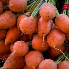 Carrot Seeds ★ PARMEX ★ Outstanding Flavor and Lovely Crunchy Texture Seeds Carrot Seeds, Pepper Seeds, Bell Pepper, Growing Vegetables, Holland, Carrots, Chili, Spicy, Pumpkin