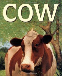 Cow: Malachy Doyle, Angelo Rinaldi: 9780689844621: Amazon.com: Books