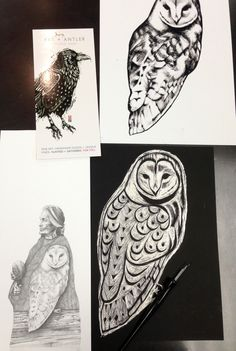 Owl sketches by Leah Pipe Artist