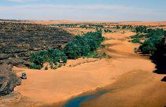 Mauritania Tagant Tidjikja    Guelta de Taoujafet