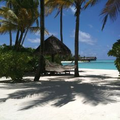 Come relax in the shade with us (at the Reethi Rah resort, Maldives)
