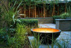 Town garden London :: contemporary garden in holland park