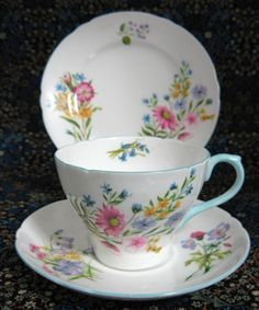 Shelley Teacup Trio Cambridge Shape Wild Flowers Cup And Saucer And Pl – Antiques And Teacups