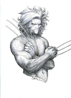 Wolverine | Steve McNiven