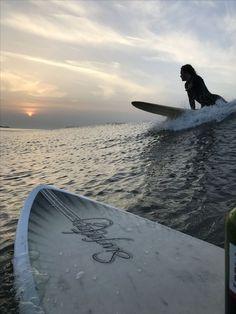 Summer Surf, Summer Vibes, Pink Summer, Photo Surf, Shotting Photo, Images Esthétiques, Surfing Pictures, Lake Pictures, Summer Pictures