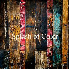 Color Splash Wood Wa