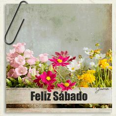 Alice Ruiz, Max Lucado, Sweetest Day, 1 Peter, Jim Morrison, Floral Wreath, Happy Weekend, Good Morning Messages, Happy Sunday