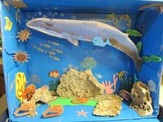 Saltwater Ecosystem Projects | Nap Time News: Nora's Habitat Diorama - The Blue Whale