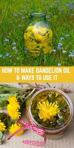 Healing Herbs, Medicinal Herbs, Natural Healing, Natural Oil, Holistic Healing, Natural Beauty, Natural Health Remedies, Herbal Remedies, Pnemonia Remedies