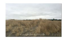 Beach Photography Long Beach Washington Photo Greeting Card Nature Photography