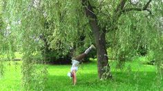 Handstand pose Plank Pose, Side Plank, Handstand, Cross Country, Horses, Yoga, Plants, Cross Country Running, Handstands